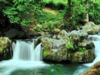 101Visions: Bary Roberts on Ecotourism in Costa Rica